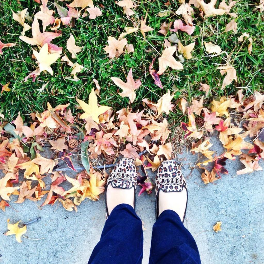 No outono é sempre igual, as folhas caem no quintal! Desculpa mas não tem como não usar essa legenda! Haha #clichê #sandyejuniorforever #nooutonoésempreigual #outono #shoesoftheday #sapatododia -------------------------------------- Loving California #Fall!