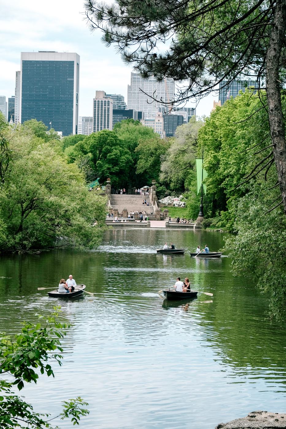 O que fazer Central Park - Debora Dahl