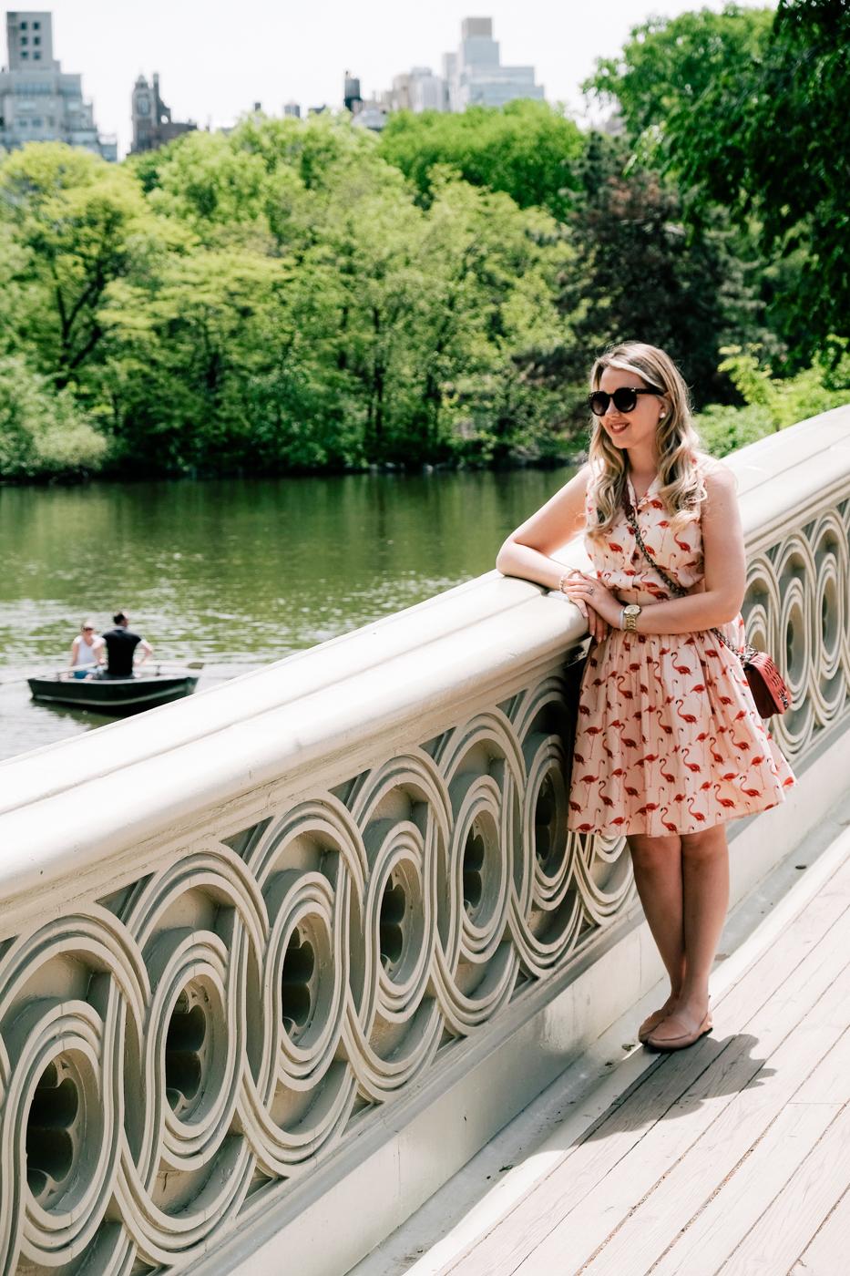 Debora Dahl, bow bridge, central park in the spring, flamingo dress