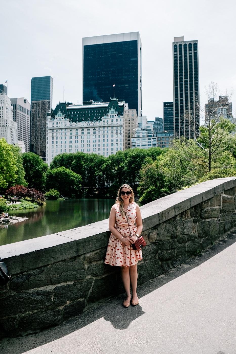 O que fazer no Central Park? Debora Dahl